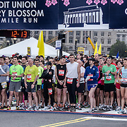 Runners in the Red Wave get ready at the start of the 2012 Cherry Blossom 10-Miler, the 40th running of the race that is run every spring in Washington DC to coincide with the National Cherry Blossom Festival. The course starts near the Washington Monument, heads over Memorial Bridge and back, goes up under the Kennedy Center, around the Tidal Basin and past the Jefferson Memorial, and then does a loop around Hains Point back to the finish near the Washington Monument.