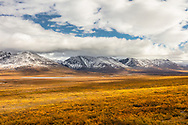 Fall colors blanket the expansive valley near the Amphitheater Mountains in Southcentral Alaska. Morning.
