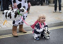 © Licensed to London News Pictures. 23/03/2016. London, UK. A farmer's child dresses as a milking cow during a protest in London in support of the farming sector. Photo credit: Peter Macdiarmid/LNP