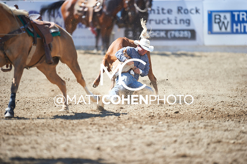 Steer wrestler Josh Garner of Live Oak, CA competes at the Redding Rodeo in Redding, CA<br /> <br /> <br /> UNEDITED LOW-RES PREVIEW<br /> <br /> <br /> File shown may be an unedited low resolution version used as a proof only. All prints are 100% guaranteed for quality. Sizes 8x10+ come with a version for personal social media. I am currently not selling downloads for commercial/brand use.