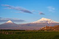 Armenie, region d'Ararat, monastère de Khor Virap et le mont Ararat // Armenia, Ararat region, Khor Virap monastery and Ararat mountain