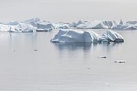 Icebergs around Pleneau Island, Antarctica