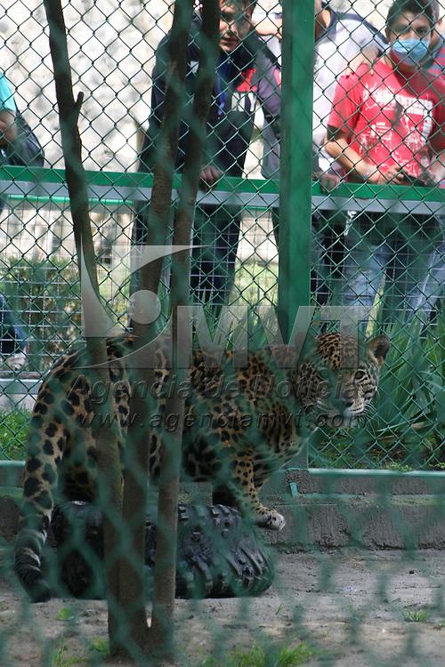 CALIMAYA, México.- Como parte del fomento a la cultura de respeto a los animales, Eruviel Eruviel Ávila Villegas, gobernador del Estado de México anunció que se creara una subsecretaría de protección a los animales. Agencia MVT / Crisanta Espinosa. (DIGITAL)