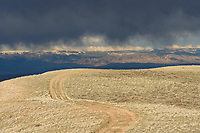 Rain was falling from the clouds, but it evaporated into the dry air before reaching the ground. This is known as virga. The views were dramatic from the McCullough Peaks Badlands, especially when the sun came out and contrasted with the dark clouds.In the distance the snow capped Bighorn Mountains can be seen.