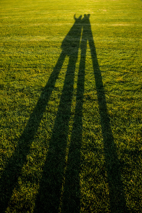 Hyde Park London long evening shadows with two human forms on green grass.  Licensing and Open Edition Prints.