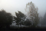 Fleeting views of cypress trees, mist, fog, fields, small town train stations, graffitti, factories