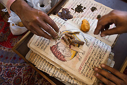 A mahout examines an ancient book on elephant maladies and herbal treatments. Elephants, a symbol of royalty, have long been revered in Indian society.