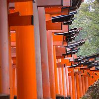Fushimi Inari Taisha is the head shrine of the god Inari, located in Fushimi Ward in Kyoto, Japan.
