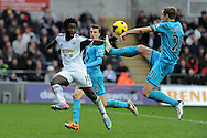 Swansea city's Wilfried Bony is challenged by Tottenham's Michael Dawson ®. Barclays Premier league, Swansea city v Tottenham Hotspur at the Liberty Stadium in Swansea, South Wales on Sunday 19th Jan 2014.<br /> pic by Andrew Orchard, Andrew Orchard sports photography.