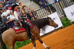 Poels Ann, BEL, Made In Walla<br /> World Equestrian Games - Tryon 2018<br /> © Hippo Foto - Dirk Caremans<br /> 15/09/2018