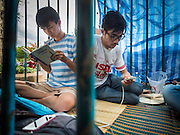 """06 JULY 2015 - BANGKOK, THAILAND: Students sit in a mock jail cell to call attention to the plight of other students arrested for charges related to political assembly. More than 100 people gathered at Thammasat University in Bangkok Monday to show support for 14 students arrested two weeks ago. The students were arrested for violating orders against political assembly. They face criminal trial in military courts. The students' supporters are putting up """"Post It"""" notes around Bangkok and college campuses up country calling for the students' release.      PHOTO BY JACK KURTZ"""