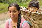 Woman carries basket strapped to her back in Manali,Vashisht,  Himachal Pradesh, India