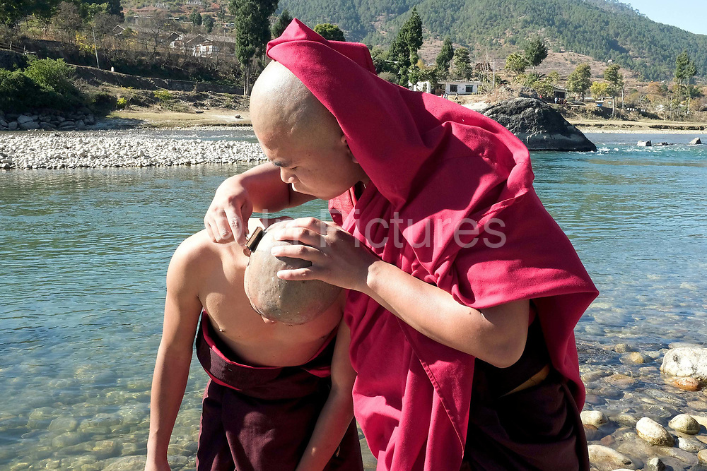 Buddhist monks shaving their heads on the banks of the Mo Chhu (Mother river) in preparation for a ritual ceremony, Punakha Dzong, Western Bhutan. Traditionally, Bhutanese families would, if they were able, send one son to join a monastery. This was viewed as creating merit for the family and household and a blessing for the child. Often from poor families, once in the monastery, their daily lives revolve around learning to read and write.