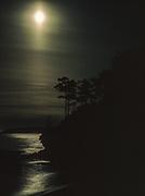 Moonlit landscape, spring, Salish Sea, Matia Island Wilderness, San Juan Islands, Washington, USA