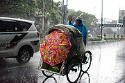 A becak driver and passenger challenge the heavy rainfall in Malang city. <br /> Indonesia has a tropical climate being near the Equator. Most rainfall occur between november and march during the rainy season. The region of Malang in specific is classified as a tropical monsoon climate, featuring wet and dry seasons.