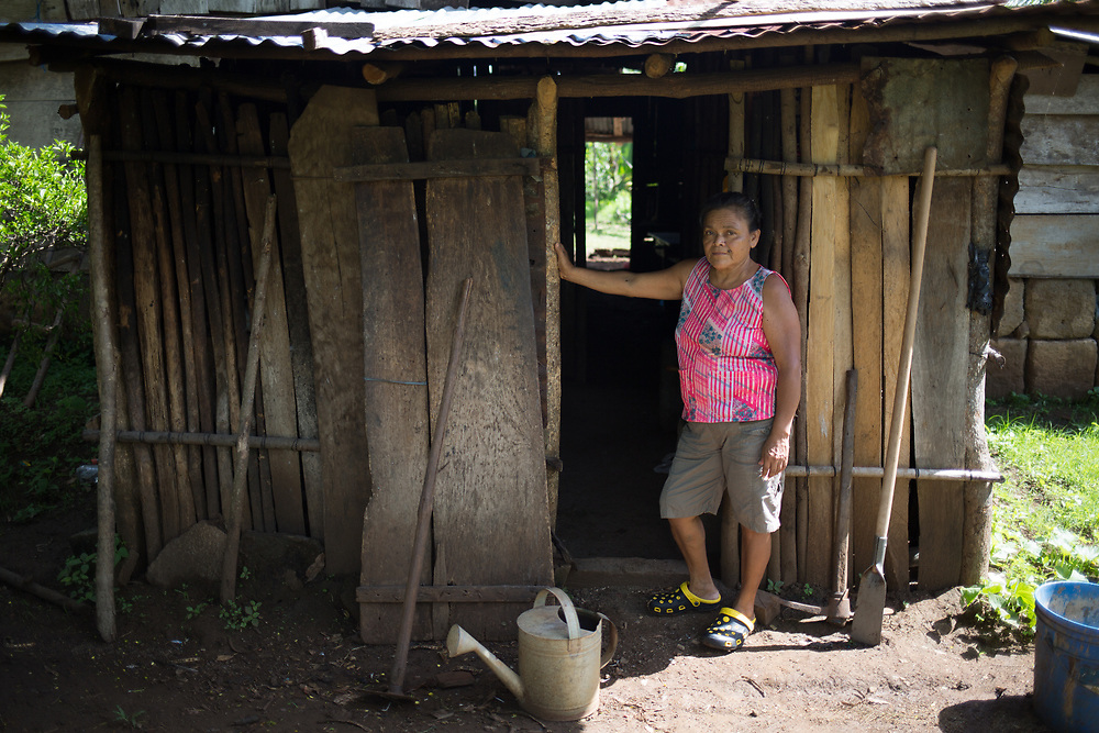 """Marta Gutierrez lives in the community of La Vainilla, Caraza, Nicaragua. She has taken part in a CIEETS program on diversification and food security supported by CWS. """"We have had the idea of improving our living standards for a long time, but it isn't easy. The honey production has helped us. Some people questioned it, they said it was no good waiting a whole year to see the production. But we have patience, and it's been good. We have three hives, in logs, and we spent a year before we could divide up the hives into box hives. Now we have three different types of Melipona bees. I've already harvested three litres of honey, but it's not the same as honey you'd find in a shop, the color and smell is different, and it is medicinal, specially for the eyes and for coughs, but also for women, for period pains. Chipiza is really tiny, jicote chipiza is another. I go to all the farmer markets, fairs, I sell mangos, jocotes, vegetables, a bit of everything, even soft cheese, eggs. With this project I've been growing new things, citrus fruits, squash, onions""""."""