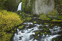 Wachlella Falls and Tanner Creek, Columbia River Gorge National Scenic Area Oregon