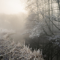 Lovely conditions this morning, a long awaited hoar frost and fog thrown in for good measure. More of this pleae winter.