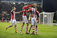 The Stoke players celebrate their 2nd goal of the game scored by Steven N'ZonzI (15) during the Barclays Premier league, Stoke city v Sunderland at the Britannia stadium in Stoke on Trent, England on Saturday 23rd Nov 2013. pic by Jeff Thomas, Andrew Orchard sports photography,