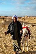 A man poses with his donkey at the stepped Pyramid of Djoser, Saqqara, Al Badrashin, Giza Governate, Egypt.