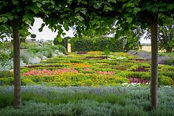 Knot garden of annuals at Broughton Grange