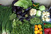 Israel, Petah Tikva, vegetable stall in the market
