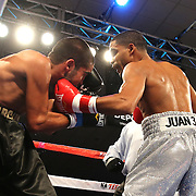 ORLANDO, FL - OCTOBER 04:  Gamalier Rodriguez (R) punches Martin Gonzales to end the bout during a professional featherweight boxing match at the Bahía Shriners Auditorium & Events Center on October 4, 2014 in Orlando, Florida. Rodriguez won the bout by TKO. (Photo by Alex Menendez/Getty Images) *** Local Caption *** Martin Gonzales; Gamailer Rodriguez