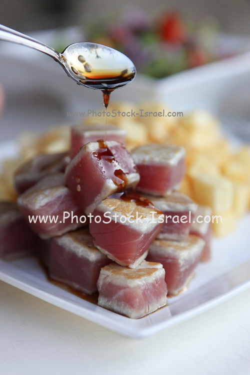 scorched tuna squares