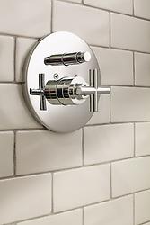 Shower Valve Trims