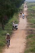Arrozales en las afueras de Hanoi, Vietnam