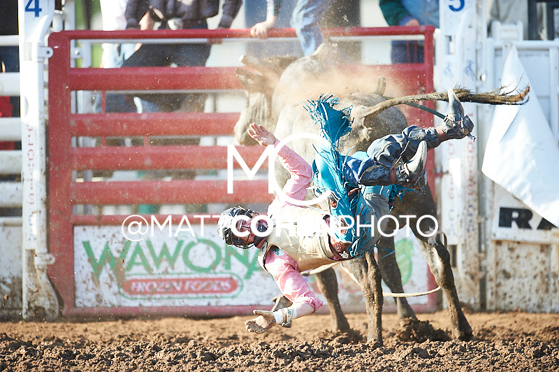 Bull rider Brett Stall of Detroit Lakes, MN gets bucked off Blue Blooded at the Clovis Rodeo in Clovis, CA.<br /> <br /> <br /> UNEDITED LOW-RES PREVIEW<br /> <br /> <br /> File shown may be an unedited low resolution version used as a proof only. All prints are 100% guaranteed for quality. Sizes 8x10+ come with a version for personal social media. I am currently not selling downloads for commercial/brand use.
