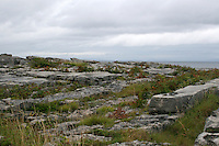 Limestone rock field on Inis Oirr the Aran Islands Galway Ireland