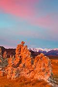 Tufa Formations, Pink Dawn and the Sierra Nevada, Mono Lake, Mono Basin National Forest Scenic Area, California