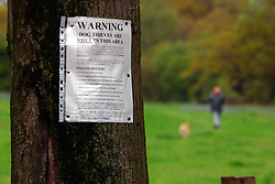 Sign on tree trunk warning dog owners are stealing dogs from local park UK