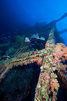 Diver and Soft Coral Encrusted Wreck