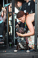 While Falling In Reverse played the Vans Warped Tour, a dog watched while wearing protective headphones. Photographer Chelsea Lauren pets the dog.