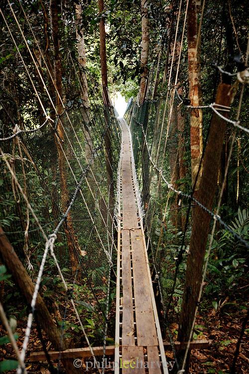 Canopy walkway through the forest at Batang Al National Park, Kuching, Sarawak, Malaysian Borneo