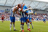 Football - 2013 / 2014 Championship  - Brighton & Hove Albion vs. Derby County<br /> Brighton's Inigo Calderon celebrates by lifting goal scorer Leonardo Ulloa<br /> <br /> Colorsport/Shaun Boggust