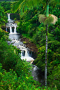 Umauma Falls along the lush Hamakua Coast, The Big Island, Hawaii USA