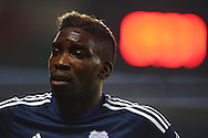 Sammy Ameobi of Cardiff city looks on. Skybet football league championship match, Cardiff city v Middlesbrough at the Cardiff city Stadium in Cardiff, South Wales  on Tuesday 20th October 2015.<br /> pic by  Andrew Orchard, Andrew Orchard sports photography.
