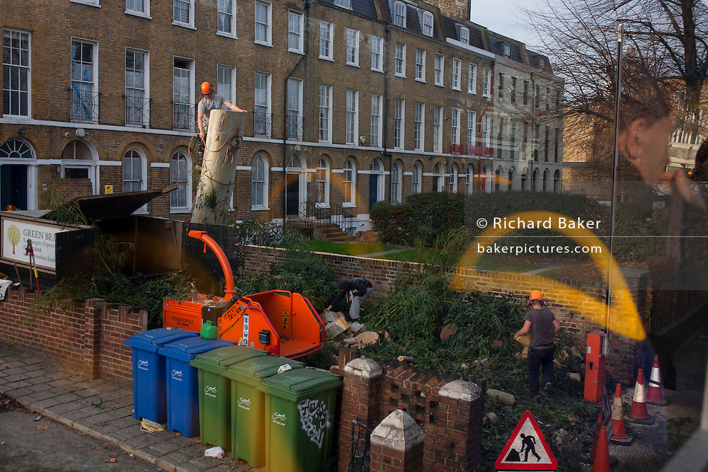 Seen from a bus, a tree surgeon and his crew from Green Bear Tree Surgery remove a large Plane tree from an urban property, on 9th December 2016, in central London.