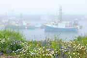 Fishing boats in fog at North Head<br /> Grand Manan Island<br /> New Brunswick<br /> Canada