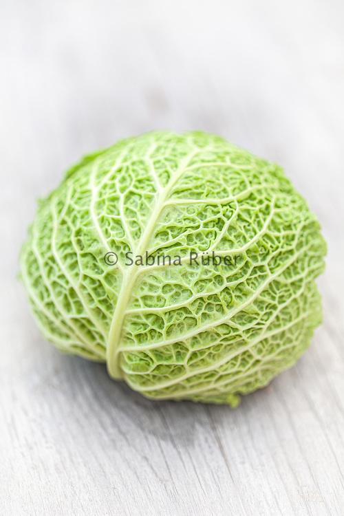 Brassica oleracea var. sabauda 'Savoy Cabbage' - cabbage