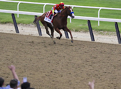 June 9, 2018 - Elmont, New York, U.S - As JUSTIFY (with jockey MIKE SMITH aboard) heads down the stretch in the lead ahead of GRONKOWSKI (ridden by JOSE L. ORTIZ) in the Belmont Stakes, fans at Belmont Park in New York cheer. With this victory, Justify would become the 13th Triple Crown winner in history. (Credit Image: © Staton Rabin via ZUMA Wire)