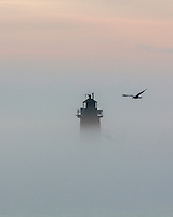 The South haven lighthouse peering over the cover of fog.