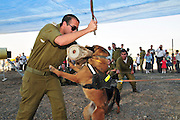 Israel, Tel Nof IAF Base, An Israeli Air force (IAF) exhibition Attack dog demonstration