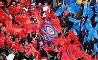 Fotball, 9. november 2008, NM finale , Cupfinale Cup-finale Vålerenga - Stabæk 4-1<br /> <br /> publikum , fan fans klanen , flagg , skjerf
