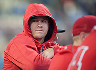 The Angels' Mike Trout, who was out of the lineup for the second night in a row due to illness, watches from the dugout during their Freeway Series game Friday night at Dodger Stadium.<br /> <br /> <br /> ///ADDITIONAL INFO:   <br /> <br /> freeway.0402.kjs  ---  Photo by KEVIN SULLIVAN / Orange County Register  --  4/1/16<br /> <br /> The Los Angeles Angels take on the Los Angeles Dodgers at Dodger Stadium during the Freeway Series Friday.<br /> <br /> <br />  4/1/16
