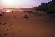 Beach, Montauk Point, Long Island, New York
