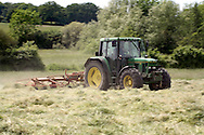 Tractor turning hay for haylage in summer meadow